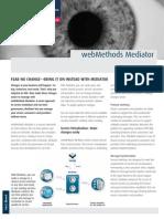 SAG GS Mediator FS Jan13 Web