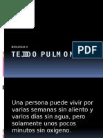 TEJIDO PULMONAR