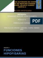 FUNCIONES HIPOFISIARIAS..