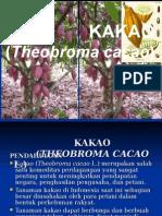 Pardono - Kakao
