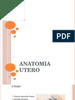 Anatomia e Histologia Del Utero