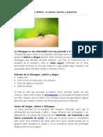 Dengue - Chikunguya y Malaria