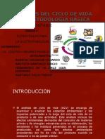 UNIDAD 6 DESARROLLO S..pptx