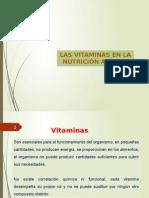 Clase 6 Vitaminas 2015 -Fin