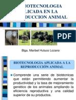 La Biotecnologia Aplicada a La Reproduccion Animal[1]