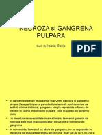 Necroza Si Gangrena Pulpara