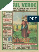 Asul Verde - Nr. 17, 2005