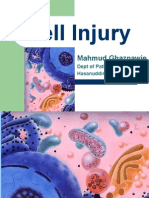 Cell Injury- English