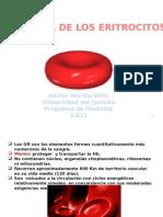 Fisiologia de Los Eritrocitos 2012