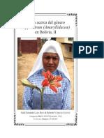 Notas acerca del género Hippeastrum (Amaryllidaceæ) en Bolivia, II