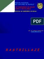 Cap. IV.- Rastrillaje- 2013