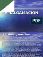 63166980 1 a Amalgamacion