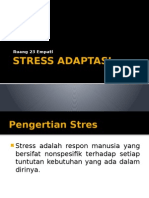 Stress Adaptasi