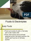 Fluid, Electrolytes, And Acid-Base Balance 2012-1
