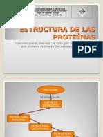 proteinas - enzimas.ppt