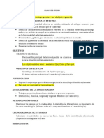 Estructura Plan de Tesis-1