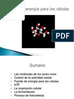 3.3 Fuente de Energía Para Las Células PRISCILA
