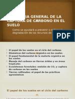Tendencia General de La Captura de Carbono en (1)