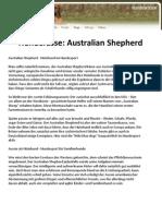 Hunderasse Australian Shepherd