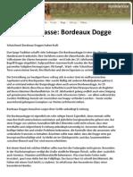 Hunderasse Bordeaux Dogge