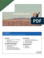 Gerencia Agil de Proyecto Pmi