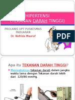 persentasi Hipertensi Prolanis Pkm Pabuaran- Nefrida
