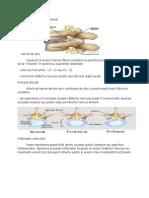 Recuperarea durerea lombară
