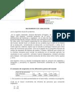201310071436530.EvaluacionMatematicaVegetal