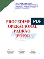 POP Procedimento Operacional Padrão
