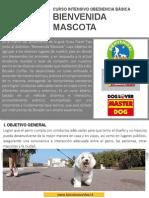 curso-bienvenida-mascota-2015 (1)