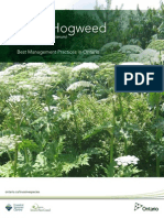Giant Hogweed Information booklet