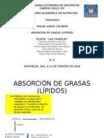 2A Absorción de Grasas -Las Chavelas-