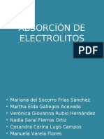 2b -Absorcion de Electrolitos Las Claudias