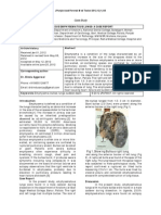 J punjab.pdf
