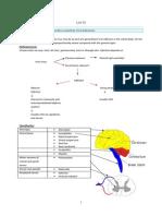 Neurology - Final Topics (Part 3)