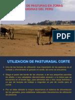 Utilizacion_Conservación_forrajes15.pdf