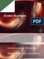 acidos-nucleicos parte2