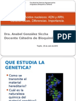 T-33 Acidos Nucleicos