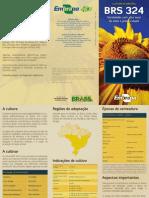 Folder_ Girassol - Variedade BRS 324