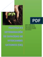 PRACTICA DE CAPACIDAD DE INTERCAMBIO CATIONICO.pdf
