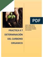 Practica de Carbono Organico