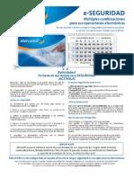 e-Seguridad.pdf