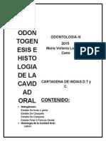 Guia Histologia Cavidad Oral (Odontogenesis)
