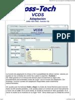 VCDS Adaptación