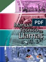 Manual Tecnico de Llamas