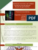 proteinas y la apalicacion en la biotecnologia mediante el uso de biorreactores