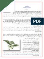 الحرية المالية . د هشام يوسف