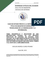 Riesgos Implementación ERPDESARROLLO Y APLICACIÓN DE UNA METODOLOGÍA BASADA EN LAS MEJORES PRÁCTICAS DE CONTROL DE CALIDAD, PARA APLICAR  EN LA IMPLEMENTACIÓN DE UN ERP PARA EMPRESAS DEL TIPO PYMES CON EL FIN DE REDUCIR LOS FACTORES DE RIESGO QUE AFECTAN EL TIEMPO Y EL COSTO DE LA IMPLEMENTACIÓN