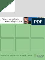 guia_ca_pulmon.pdf