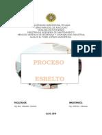 ENSAYO PROCESO ESBELTO